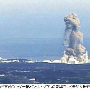 """福島第一原発事故「今」どうなっている?放射線量「8Sv」原子炉内に""""謎の生物""""!"""