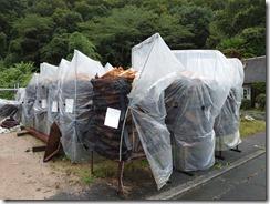 台風被害の見回り ヒートカバーが何枚か破れました。