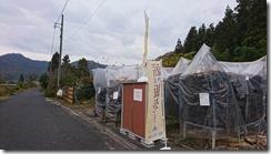 目が覚めたら朝でした。廿日市市津田で薪の販売やってます。