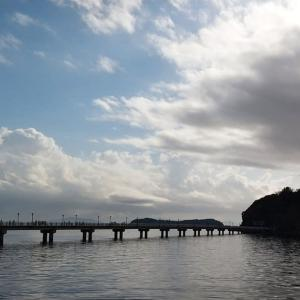 パワースポット、蒲郡の竹島でお散歩したよ🐶