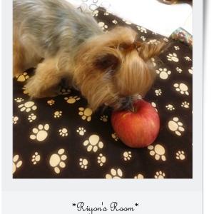 リヨンのリンゴ