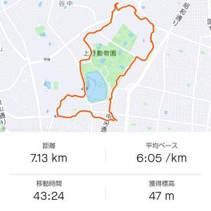 【ランチタイムラン 4/5】