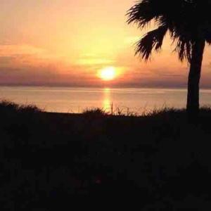 屋久島永田いなか浜の日の出を見ながら「生」を感じたあの日のこと