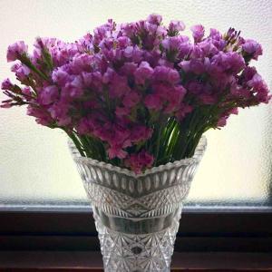 「おばあちゃんに」と、姪から花のプレゼントが来ました