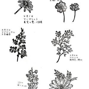 4月誕生花スタンプと山野草、アサギマダラのはんこ