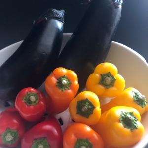 今日は野菜の日