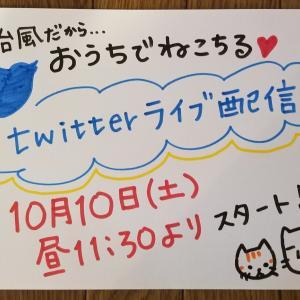 明日Twitterライブ配信🎥📱💻️
