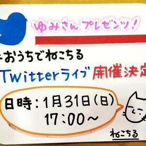 Twitterライブ開催決定!