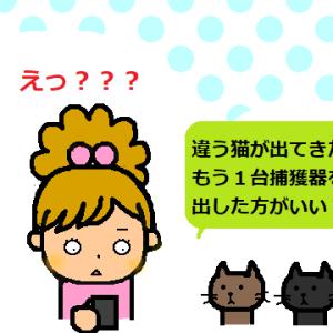 保護猫ラブスト-リ- 2・な-ぜ-
