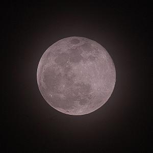 Pink moon 4月の満月 2021