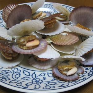春は貝が美味しい季節2