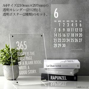 透明カレンダー