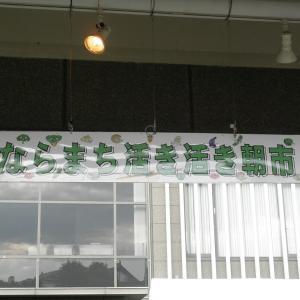 5月22日 野菜販売市