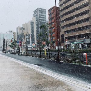 雪の東新宿