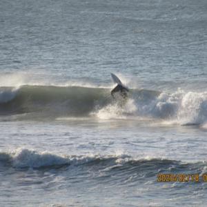 難しい火曜日の波