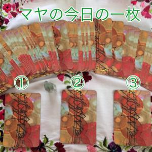 7/1マヤの今日の一枚☆三枚の中からお選びください♪禅タロット