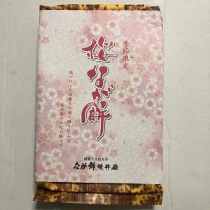 「桜なが餅」by 笹井屋