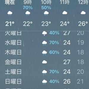 東京、梅雨入りしました