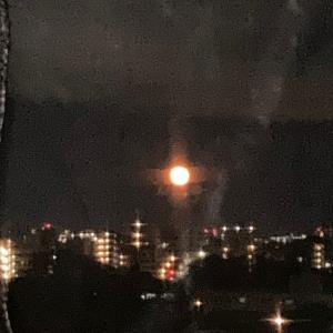 7月の満月「バックムーン」