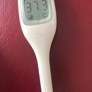 風邪で発熱