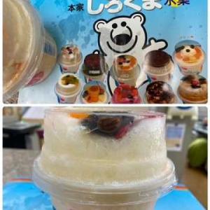食べられる熊~大きな白熊!