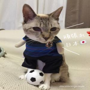 Wカップ アジア最終予選
