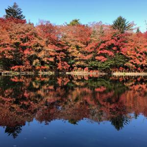 紅葉の軽井沢