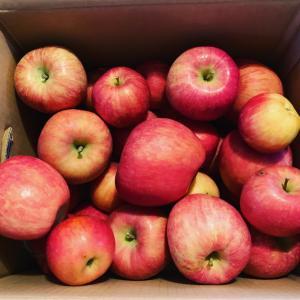 りんごとみかん箱買い