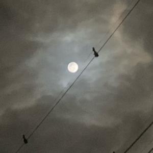 スノームーンの満月