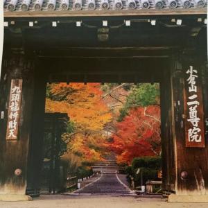京都☆二尊院の紅葉