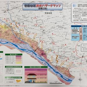 【多摩川ハザードマップシェア】世田谷のサイトがパンクしています。