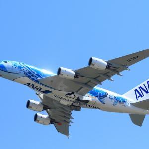 フライング・ホヌ~ANAのA380が遊覧飛行実施へ