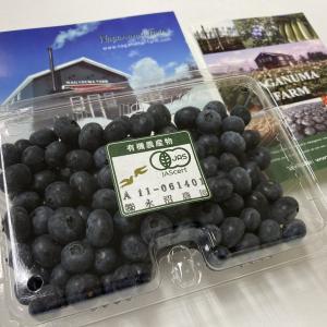 赤井川村 ながぬま農園の生ブルーベリーをいただいた!!! 濃厚な味わいでみずみずしい!!!