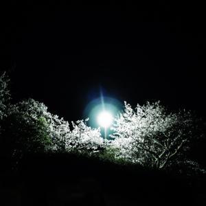 そこにある闇と、光が届かない僕