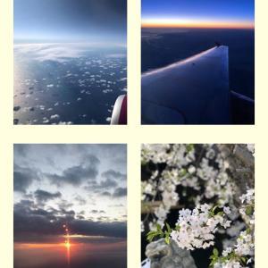 透明感を表したい!メルマガ読者さんのステキな空の写真です♪