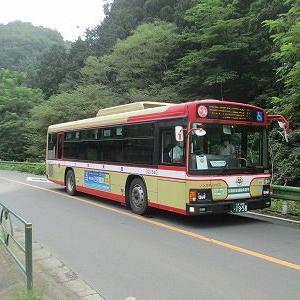 西東京バス 霊園32系統に乗る(高尾駅→関場・夕焼小焼→川原宿)