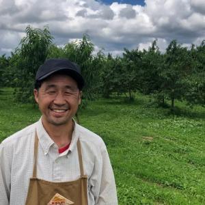 桃収穫まで、あと2週間