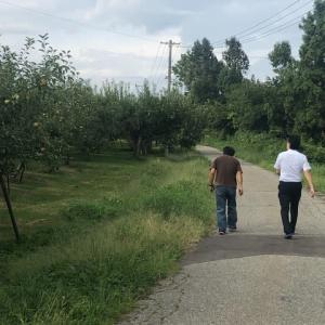紅玉りんごの産地見学