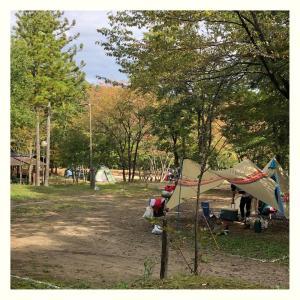 秋キャンプ。