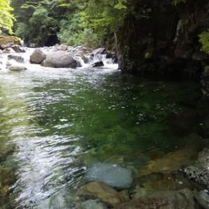木曽川水系の渓20200620