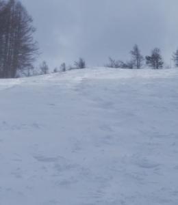 やぶはら高原スキー場20190313