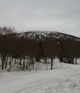 八甲田国際スキー場20190502