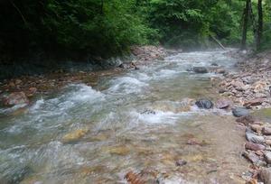庄川水系の渓