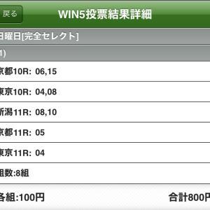WIN5の予想
