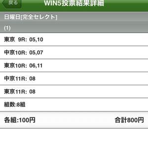 6/6(日)WIN5の予想