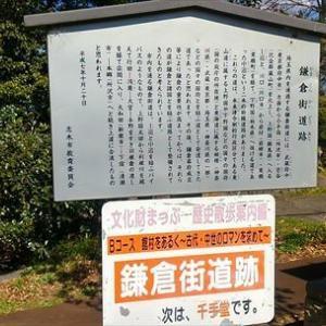 一人遊び47 (スーパー探検2)
