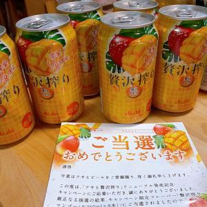 気になる阪神百貨店のその後!アサヒさん!贅沢搾り!ありがとうございます!