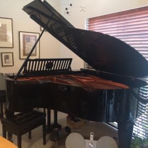 初参加!カフェでピアノを弾く会