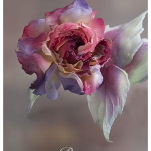 Rose Dictionary