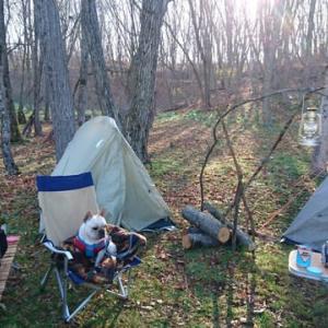 役立つキャンプ